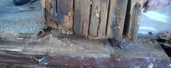 rotted wood wall